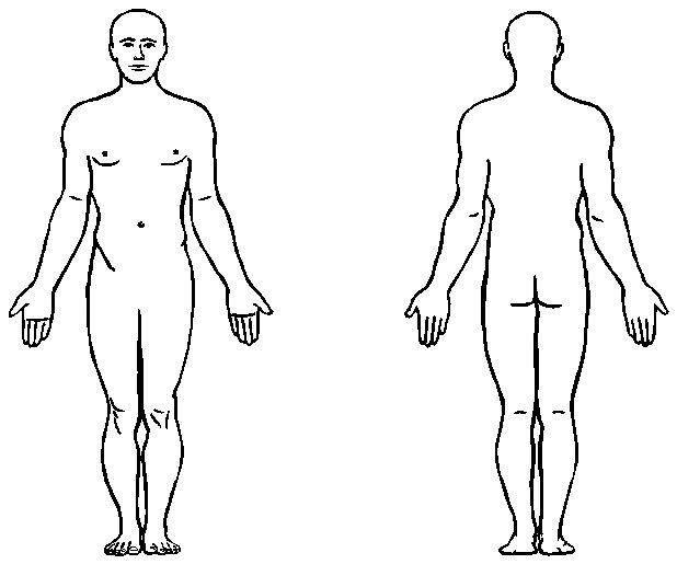 618x515 Human Body Anatomy Outline Printable For Kids