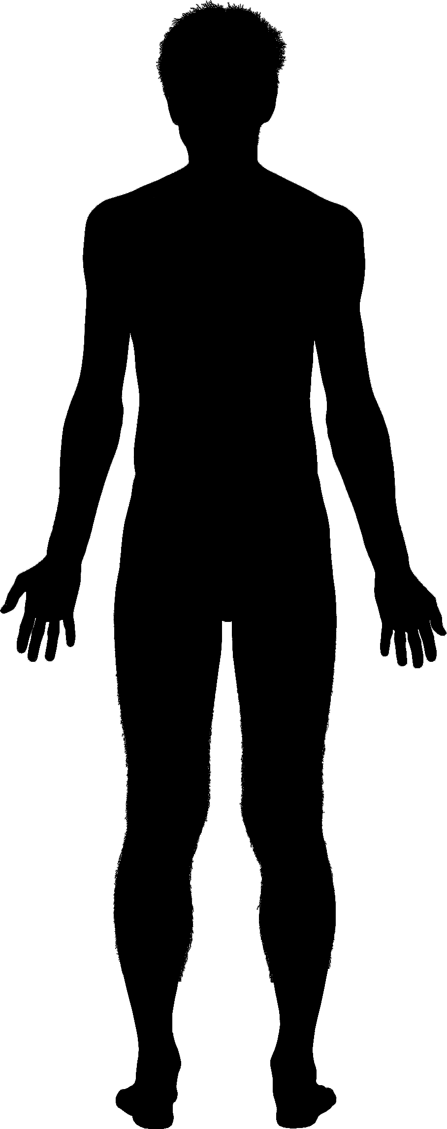 908x2291 Body Outline Png