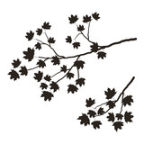 160x160 Silhouette Of A Tree Branch On A White Background. A Branch Of Oak
