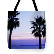 180x180 Silhouette Of Palm Trees, Laguna Beach Photograph By Panoramic Images