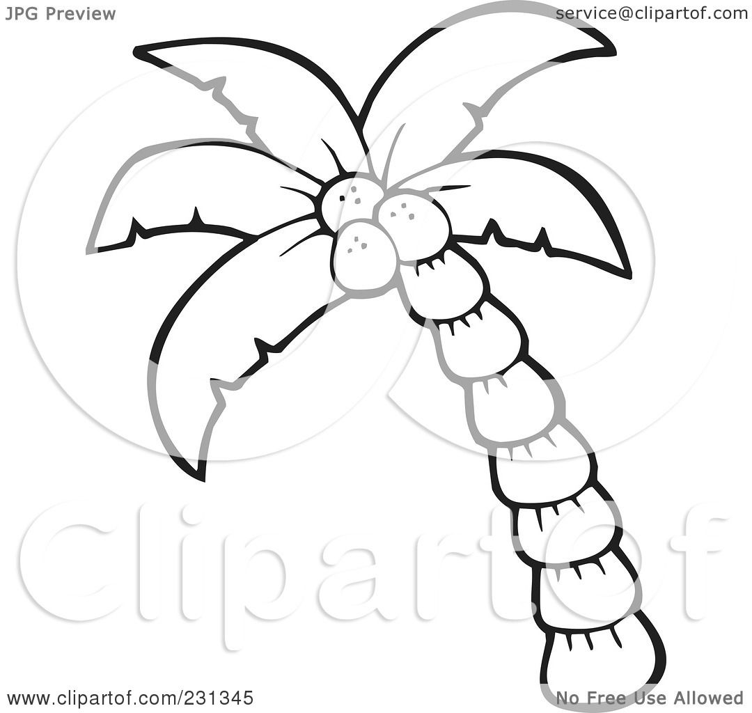 1080x1024 Simple Palm Tree Outlines Royalty Free Rf Clipart Illustration