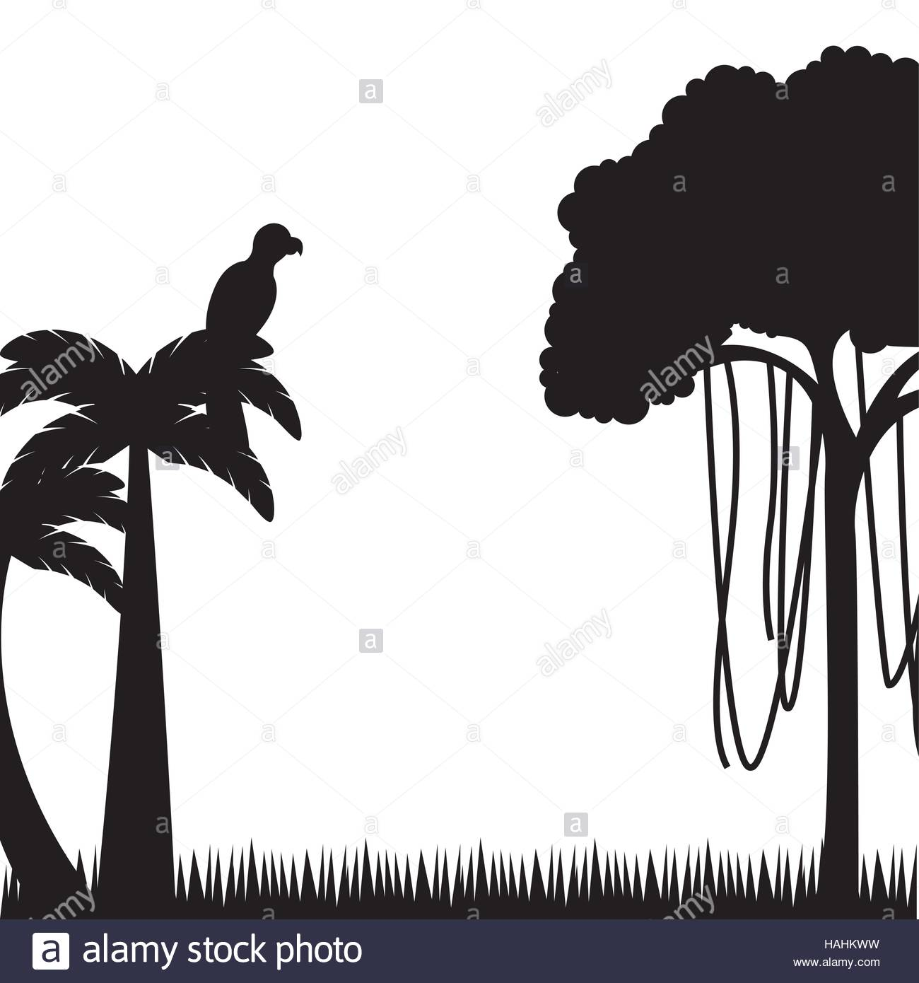 1300x1390 Silhouette Of Tree And Palm With Macaw Bird Over White Background