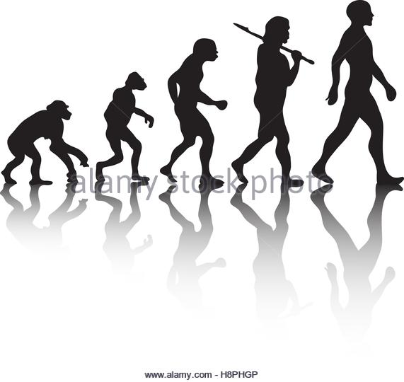 571x540 Evolution Of Man Silhouette Stock Vector Images