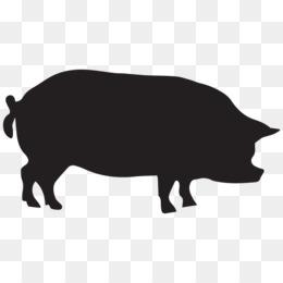 260x260 Domestic Pig Silhouette Clip Art
