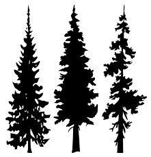 221x229 Pine Tree Silhouette Clip Art