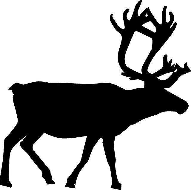 640x639 North, Silhouette, Christmas, Reindeer, Santa, Animal