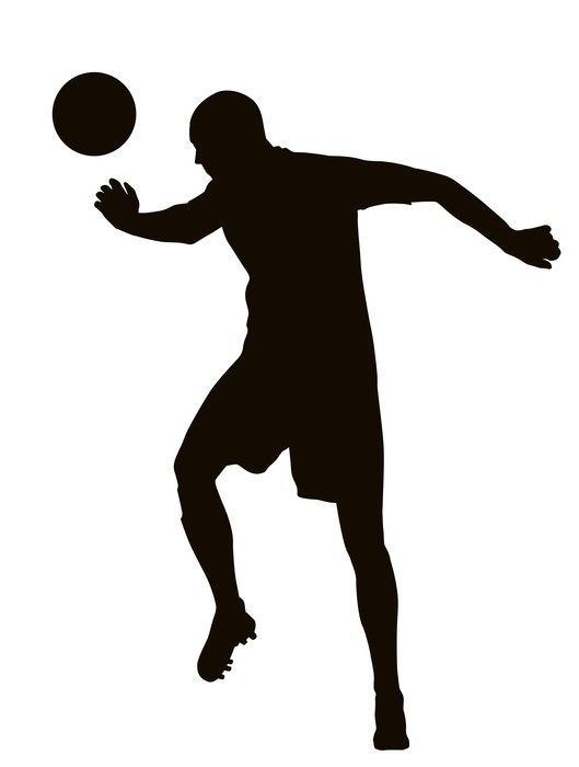 529x700 Soccer Player Detailed Vector Silhouette. Sports Design Wall Mural