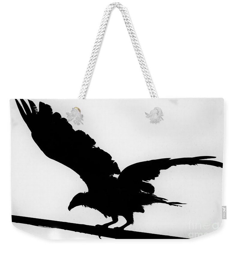 800x845 Turkey Vulture Silhouette Texas Weekender Tote Bag For Sale By