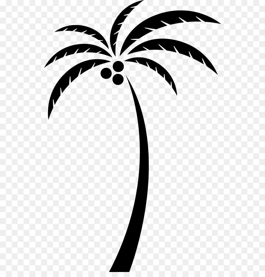 900x940 Coconut Arecaceae Tree Clip Art