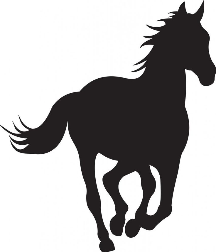 736x859 203 Best Silhouettes Horse Cowboy Silhouettes Images