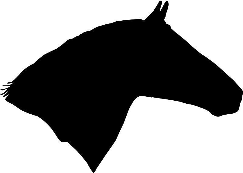 800x569 Horse Head Silhouette
