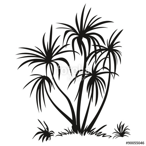 500x500 Palm Trees And Grass Silhouettes Stock Image And Royalty Free