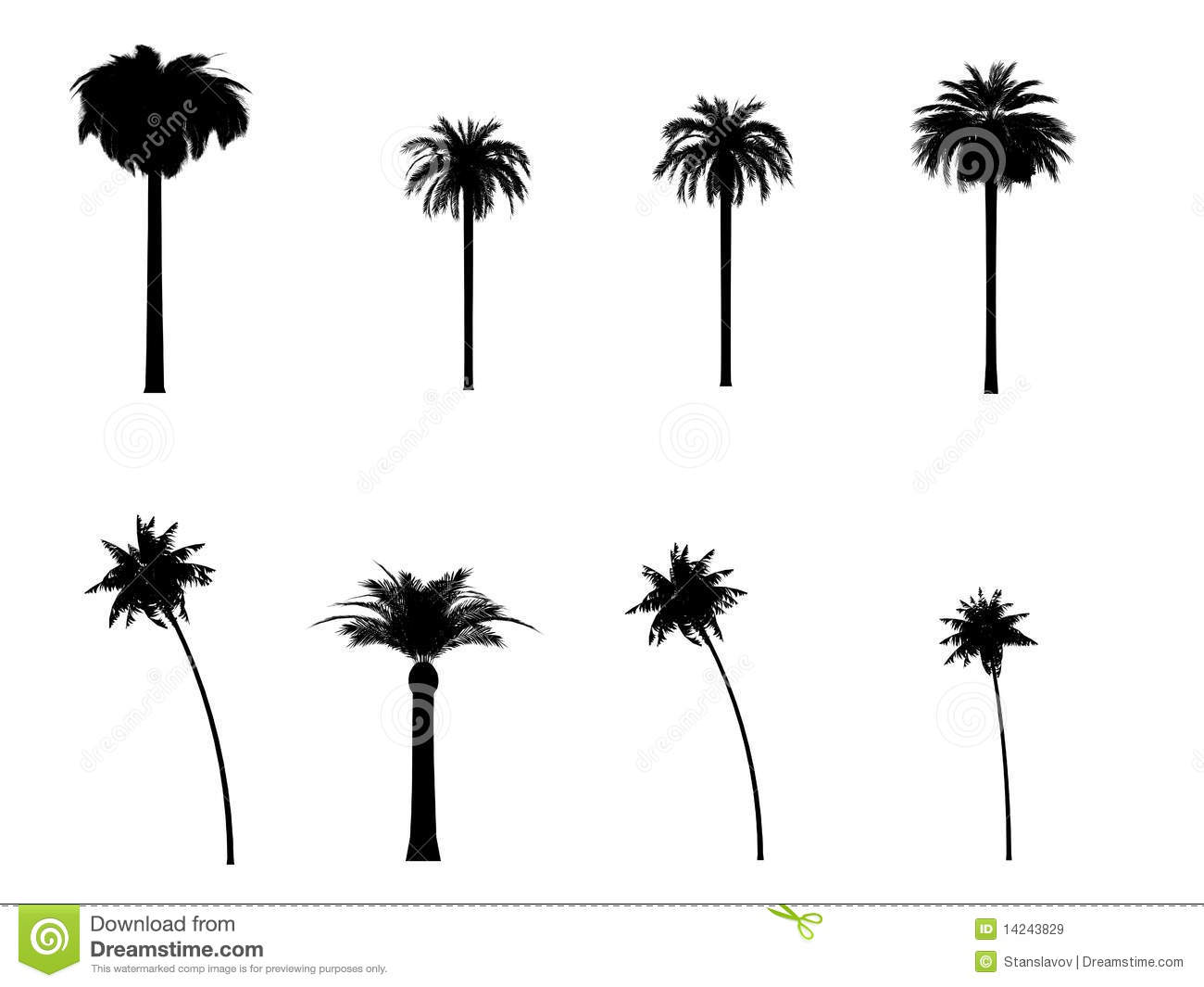 1300x1065 Palm Tree La Clipart