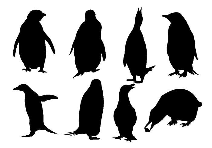 700x490 Free Penguin Silhouette Vector