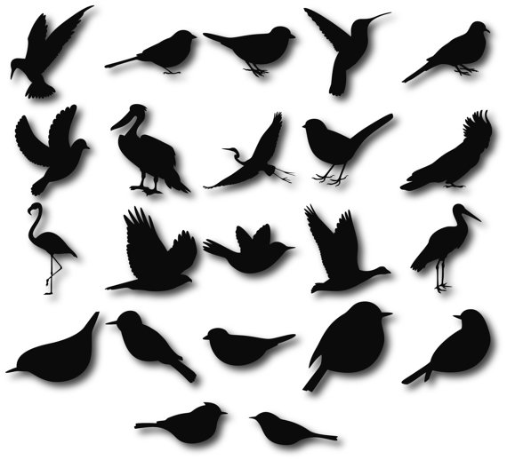 570x518 Birds Silhouettes, Birds Clipart, Birds Svg, Bird Silhouette Clip