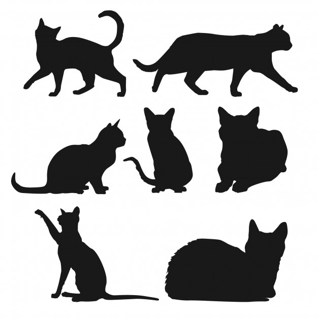 626x626 Silhouette Of Cats In Different Positions Vector Free Download
