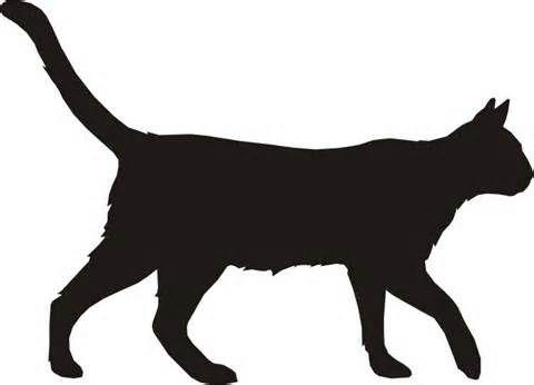 480x346 Cat Silhouette Pattern Cat Silhouette, Silhouette