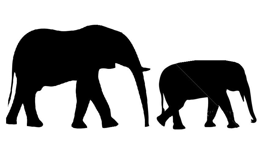 854x477 Baby Elephant Silhouette Vector