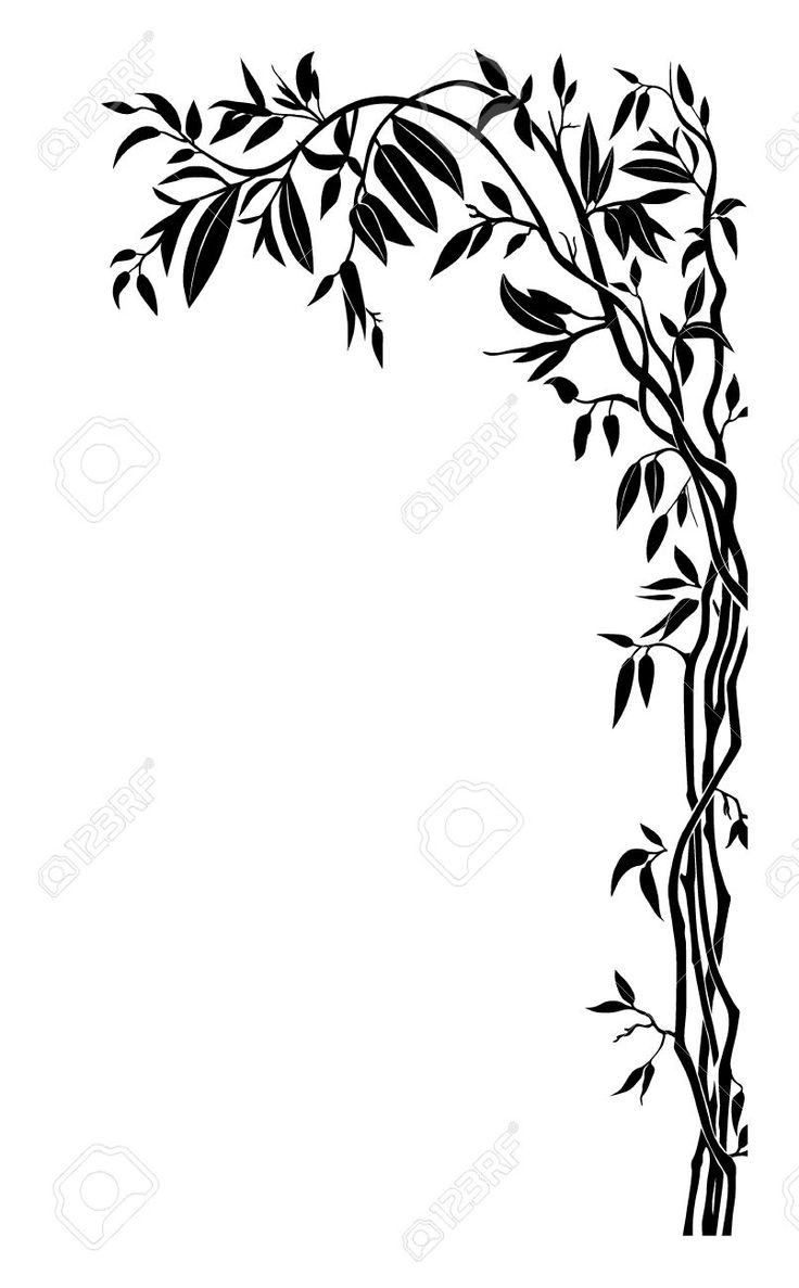 736x1187 106 Best Plant Images On Silhouettes, Silhouette Cameo