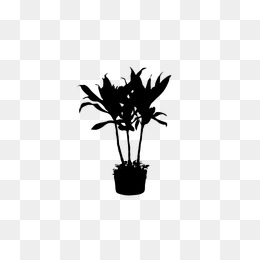 260x260 Plant Silhouette Png Images Vectors And Psd Files Free