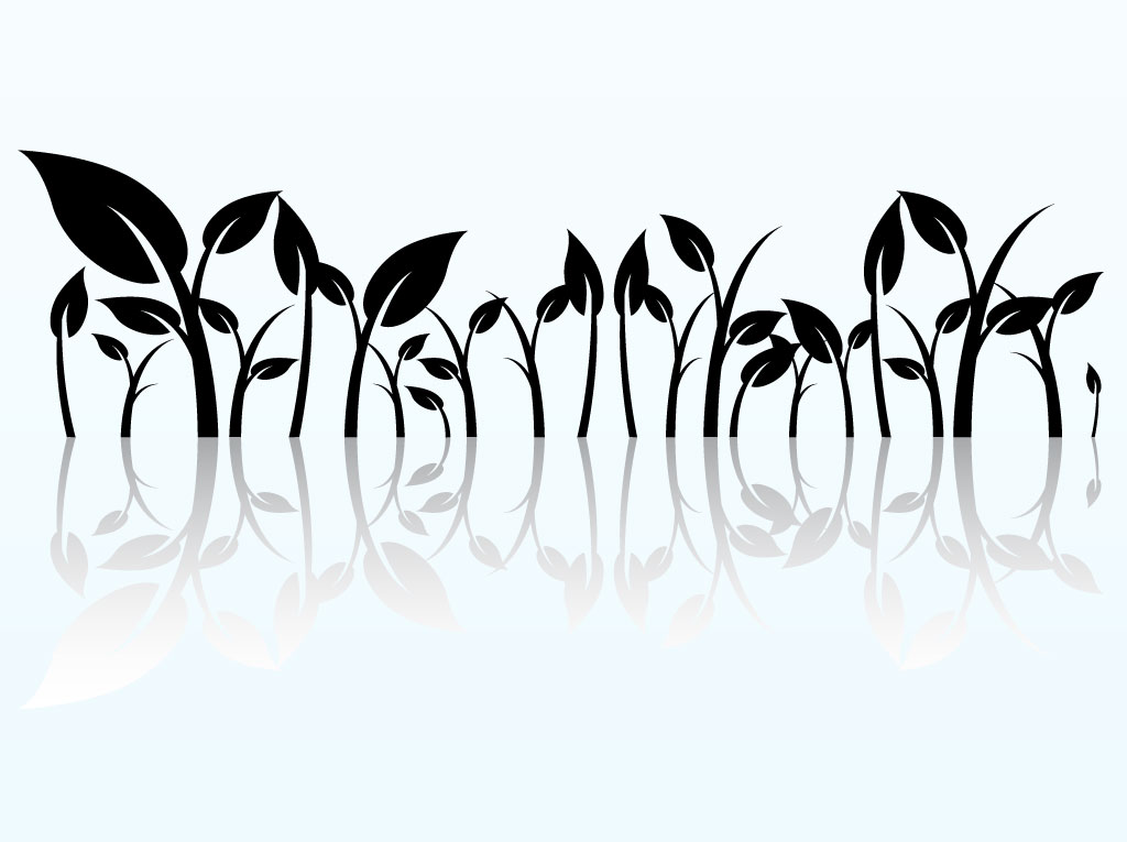 1024x765 Reflected Plant Graphics Vector Art Amp Graphics