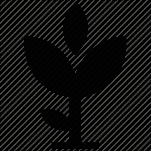 512x512 Aquatic Plant, Flower Silhouette, Foliage, Growth, Nature, Sapling