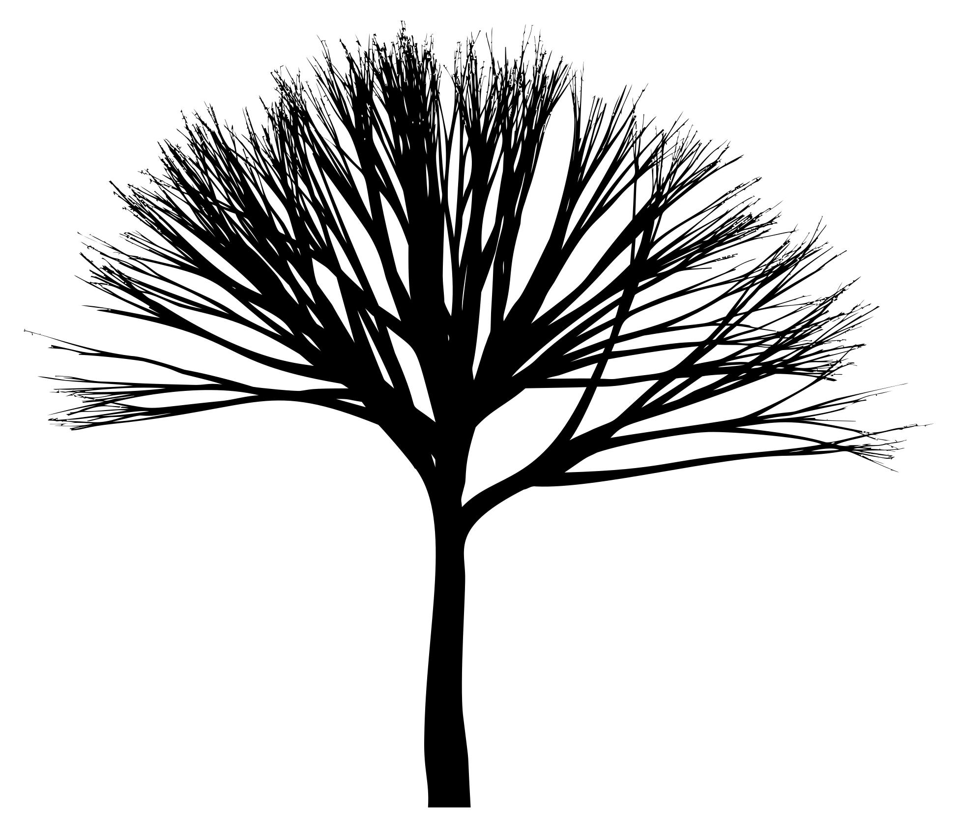 1949x1684 Skinny Tree Silhouette 3 Clipart