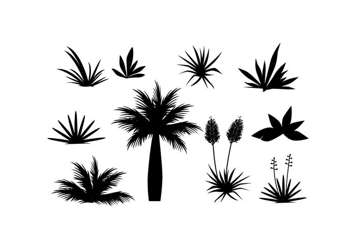 700x490 Free Tropical Plant And Grass In Silhouette Vector