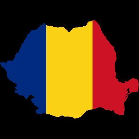 480x480 1 Romanian Romanian School Amino