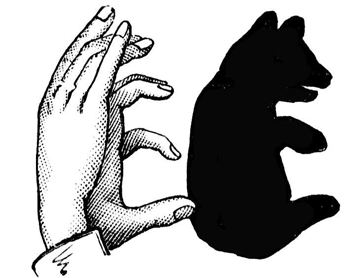 700x563 Image Result For Shadow Puppets Bear Study Guide
