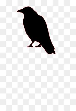 260x380 Bird Common Raven Crow Silhouette Clip Art