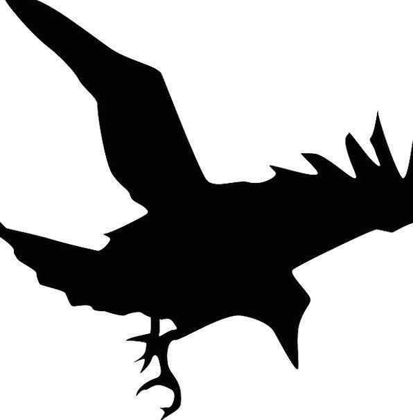 596x606 Silhouette, Outline, Dark, Birds, Natures, Black, Flying, Hovering
