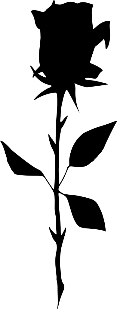 389x1024 17 Rose Silhouette (Png Transparent)