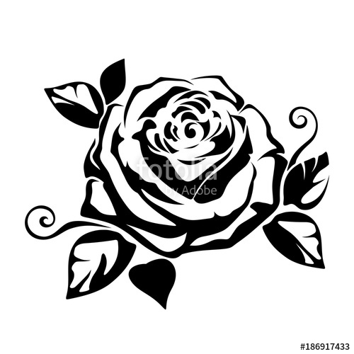 500x500 Vector Black Silhouette Of A Rose On A White Background. Stock