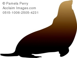 300x228 Sea Lion Silhouette Clipart Amp Stock Photography Acclaim Images