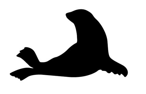 480x309 Seal Silhouette Vector Silhouettes Vector