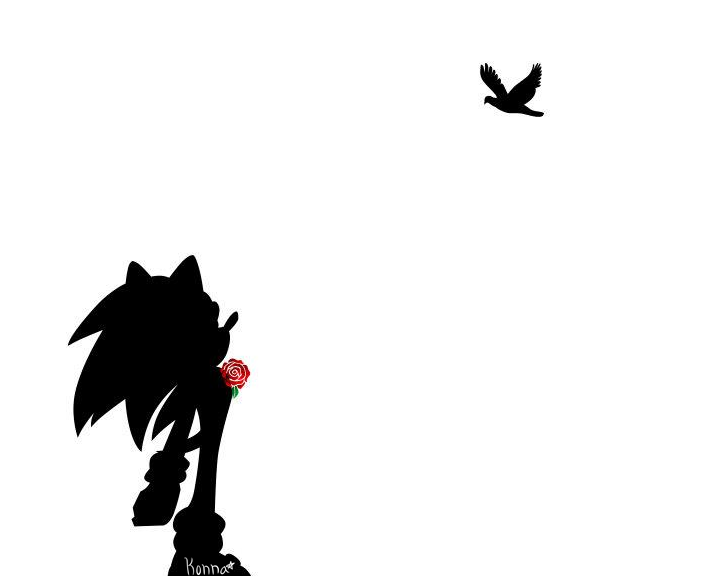 Silhouette Sonic
