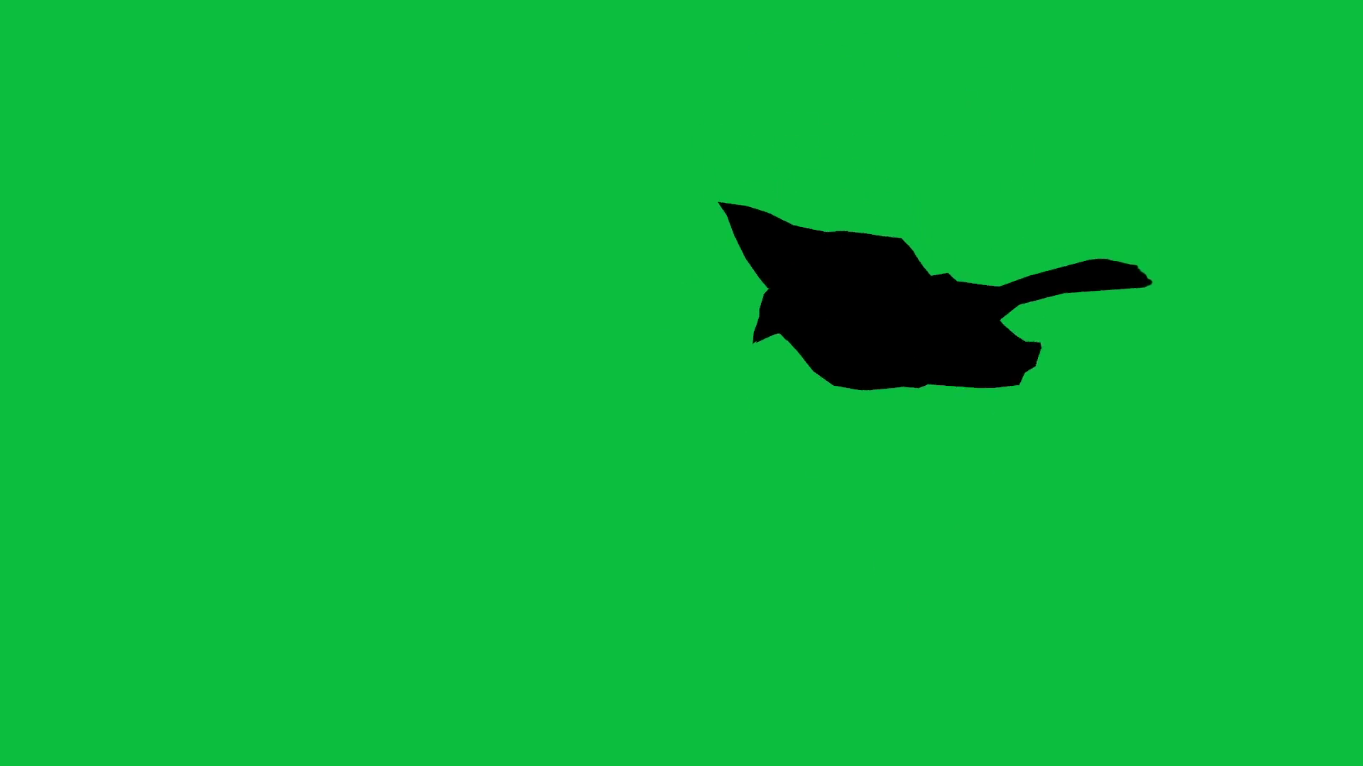 1920x1080 3d Animation Of Bird Sparrow Is Flying Silhouette