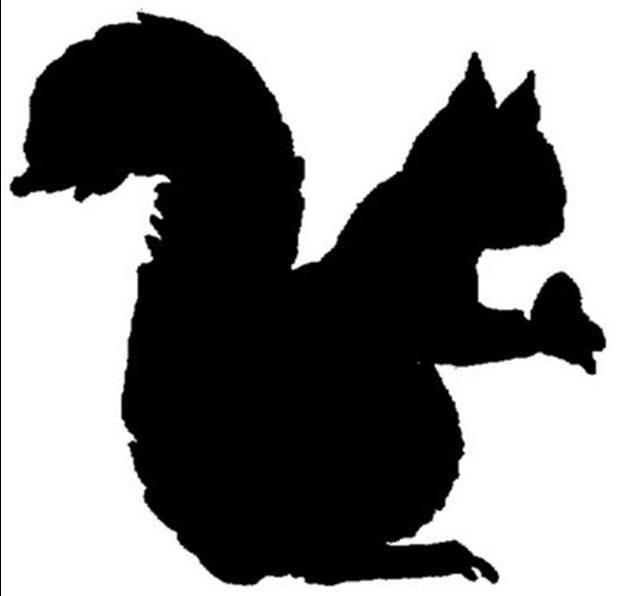 629x596 Squirrel Silhouette Squirrels In Black Silhouettes