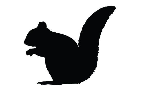 550x354 Squirrel Silhouette Vector Vector Free Download, Squirrel