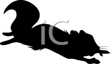 350x204 Animal Silhouette Of A Flying Squirrel