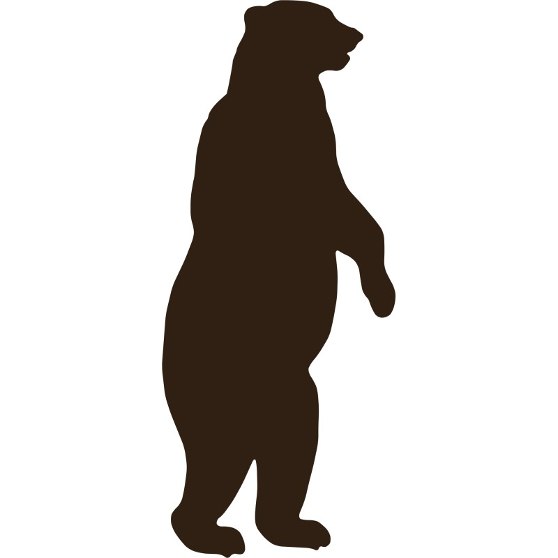 800x800 Grizzly Bear Clipart Standing Bear