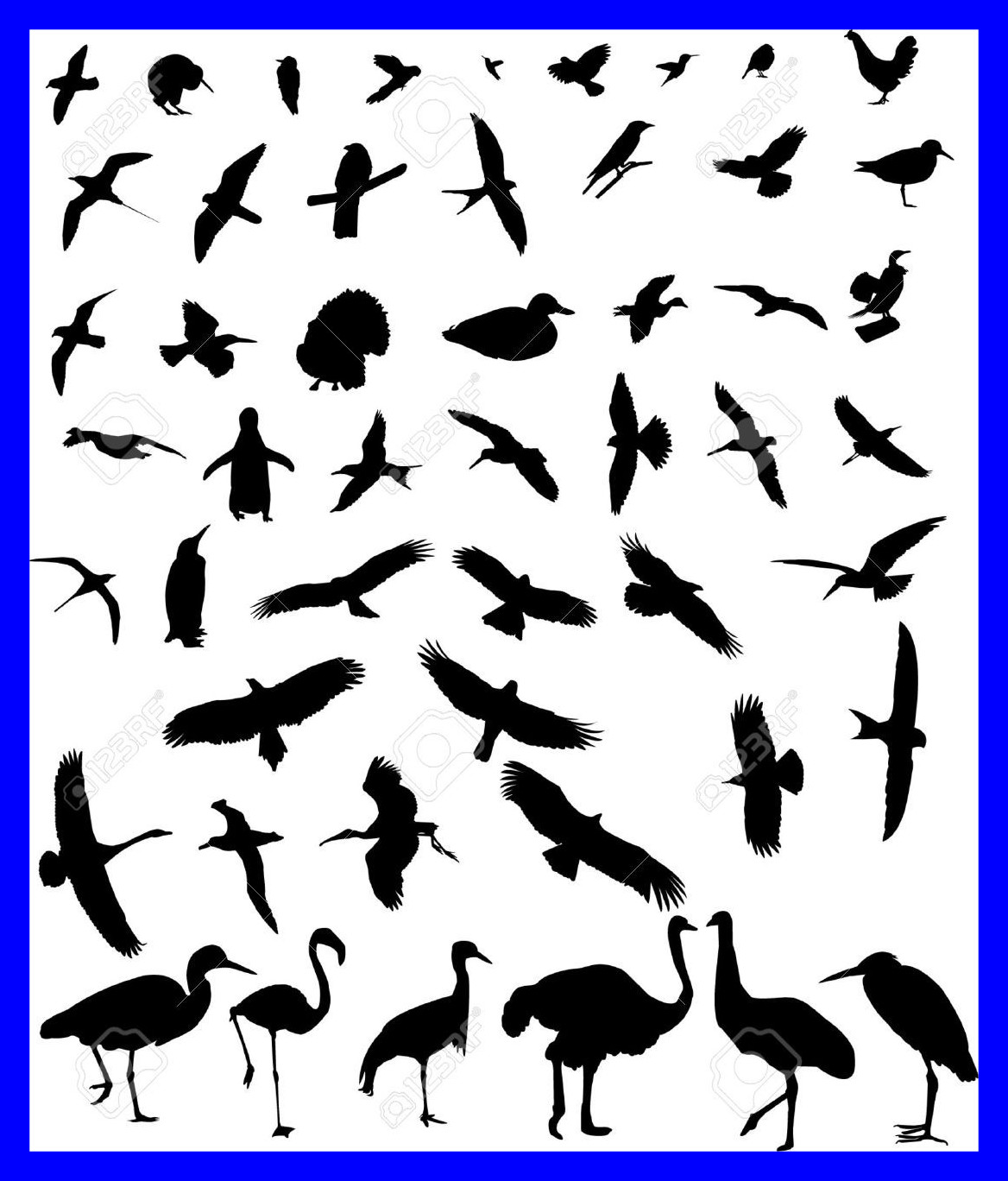 1168x1368 Astonishing Collection Silhouette Royalty Cliparts Vectors