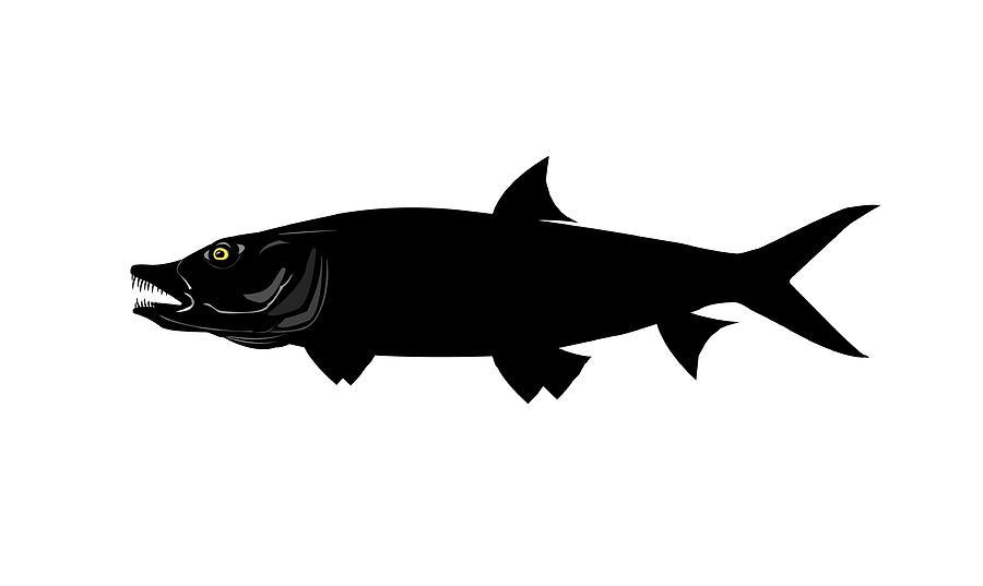 900x537 Tiger Fish Silhouette By Nigel Wakefield