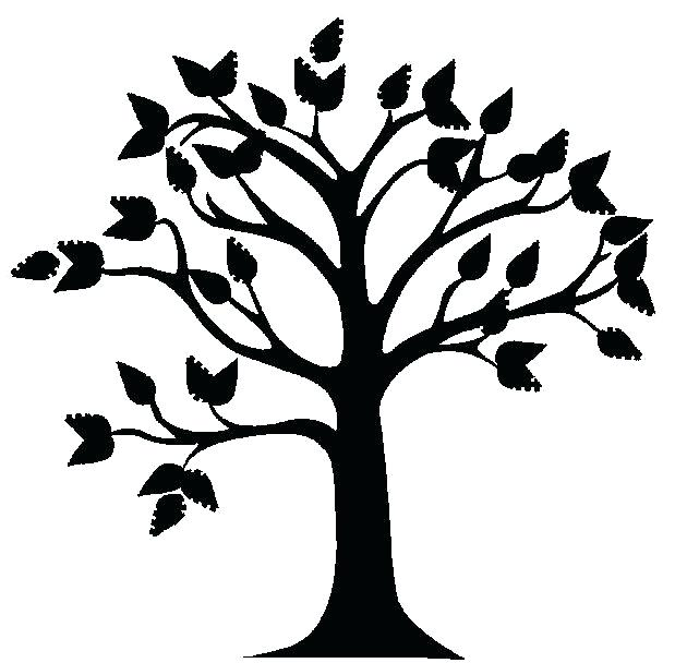 619x608 Tree Sapling Outline Branches Twigs Silhouette Black And White