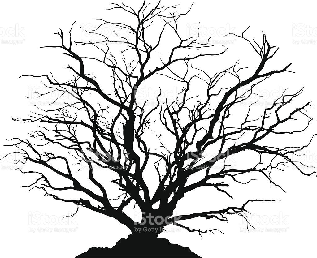 1024x834 Dead Tree Clipart Leave Silhouette