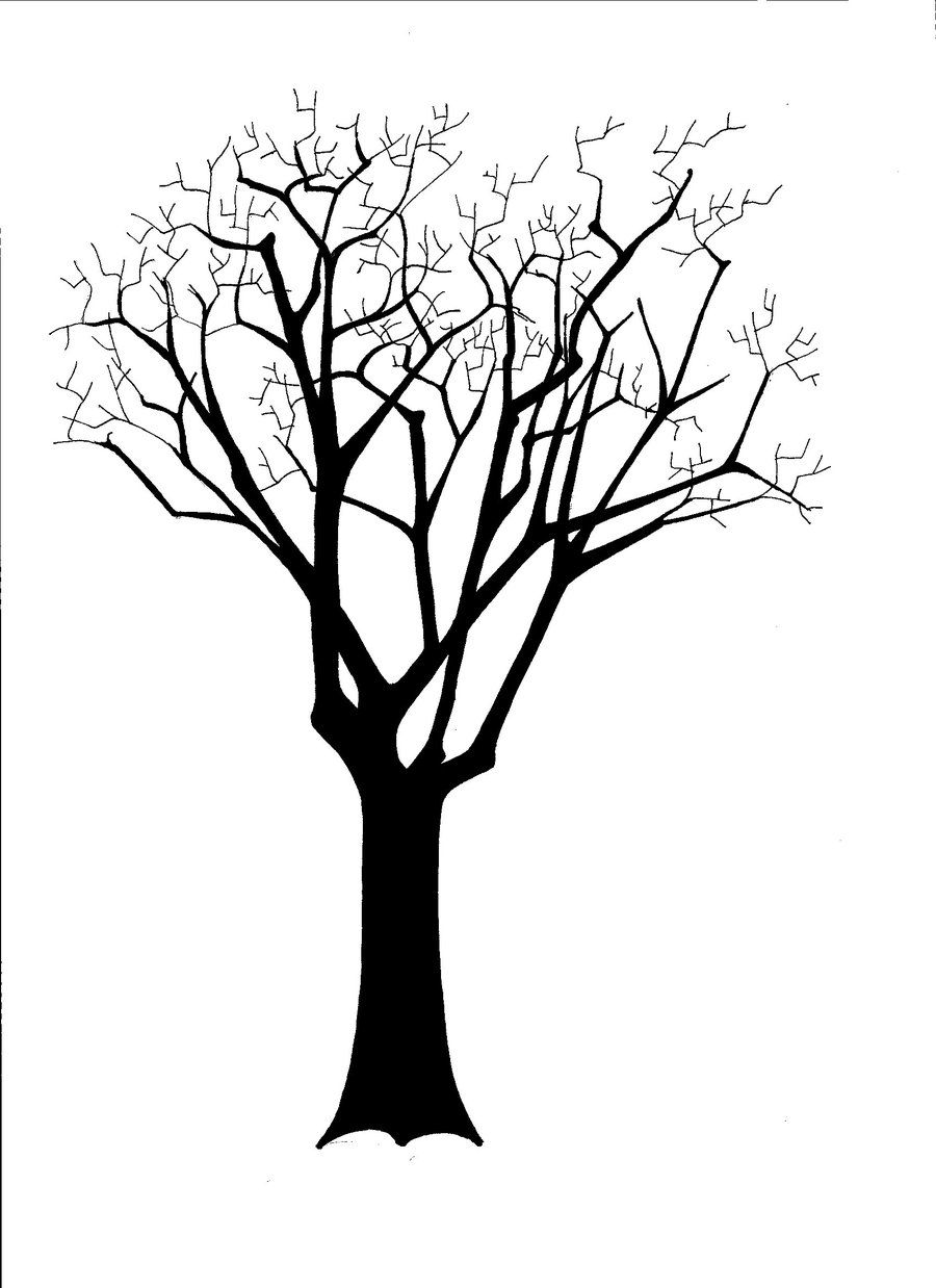 900x1238 Image Result For Tree Silhouettes Stencils Tree