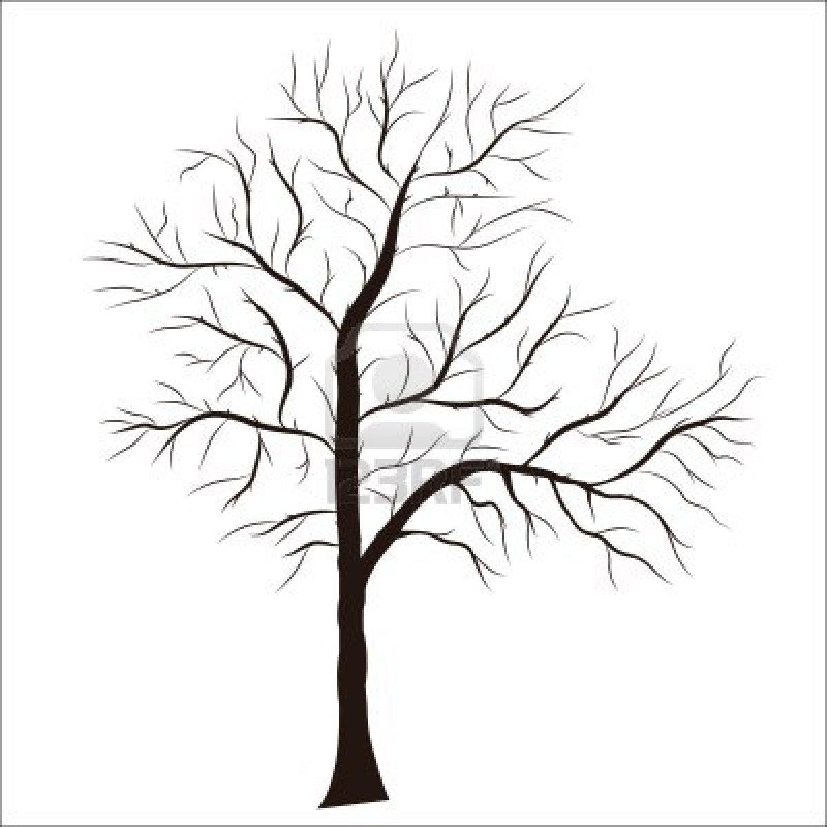 1200x1200 Tree Silhouette