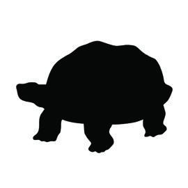 270x270 Pin By Jim Garrison On Clocks Turtle, Silhouettes