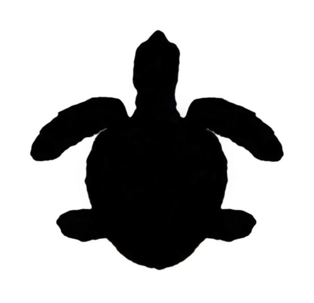 640x618 Baby Sea Turtle Silhouette